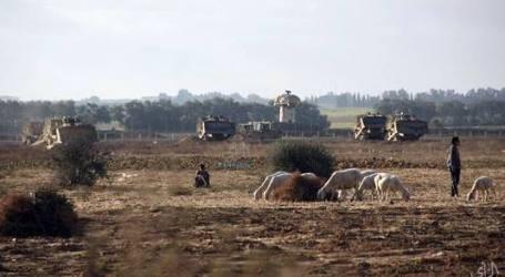 PASUKAN ISRAEL SERANG PENGGEMBALA KAMBING DI PERBATASAN GAZA