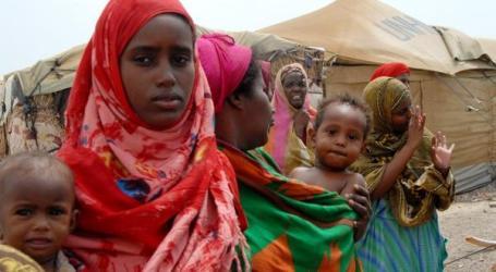 Sudan Akan Hadiri Forum Internasional Tentang Somalia Di Turki