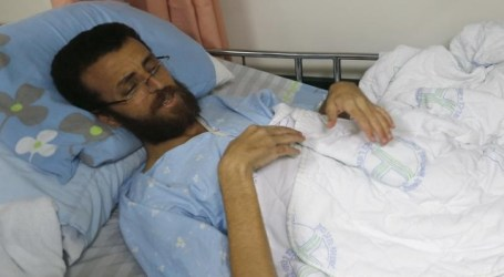 Pusat HAM Palestina Ajukan Keluhan Mengenai Al-Qeeq ke Pelapor Khusus PBB