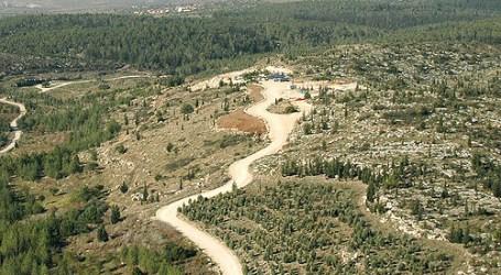 Israel Tanam Pohon di Kawasan Perbatasan Timur Gaza untuk Atasi Serangan Roket