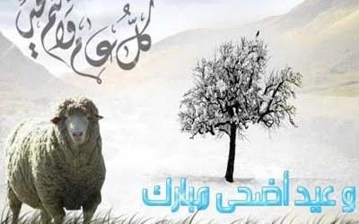 Keutamaan Berqurban pada Idul Adha