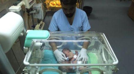 Operasi Pemisahan Bayi Kembar Siam dari Gaza Berhasil