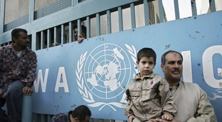 UNRWA Hentikan Pembayaran Sewa untuk 1.612 Keluarga di Gaza