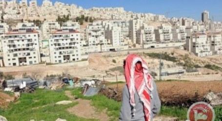 Untuk Kedua Kalinya, Pemukim Israel Serang Petani Palestina di Hebron