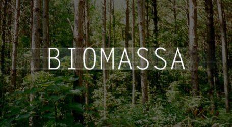 Prototipe Gasifier: Membuat Gas dari Sampah Biomasa (Oleh: Dr. Ir. H. Hayu S. Prabowo)