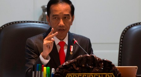 Jokowi Minta Kebakaran Hutan dan Lahan Dicegah