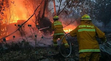Kebakaran Hebat Landa Israel, Netanyahu Minta Bantuan Internasional