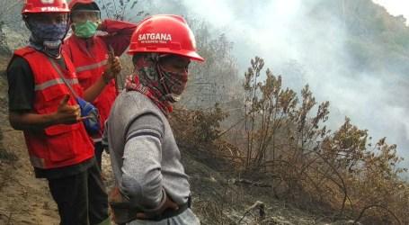 Kebakaran Hutan Lindung di Gunung Slamet Wilayah Brebes Padam