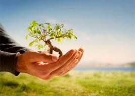 Tugas Manusia Menjaga Alam dan Melestarikannya