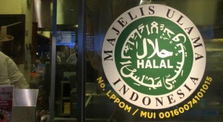 Cara Cepat dan Mudah Proses Sertifikasi Halal Menurut LPPOM MUI