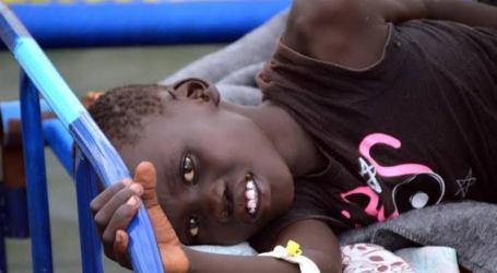 Wabah Demam Lassa Bunuh Puluhan Warga Nigeria