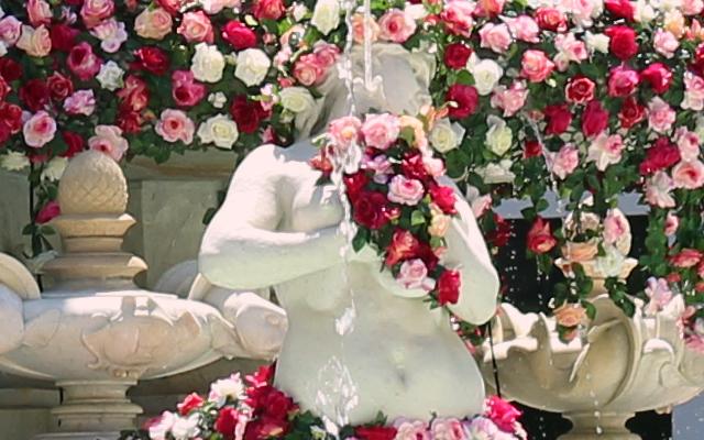 festival_roses_lyon_askaelle_2