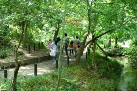 ②小川のせせらぎを耳にしながら森林浴が出来る素敵な公園です