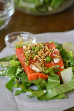 Ginger-Soy Salmon over Bok-Choy (www.mincedblog.com)