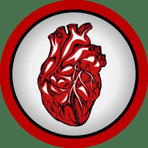 IG élevé et coronaropathie