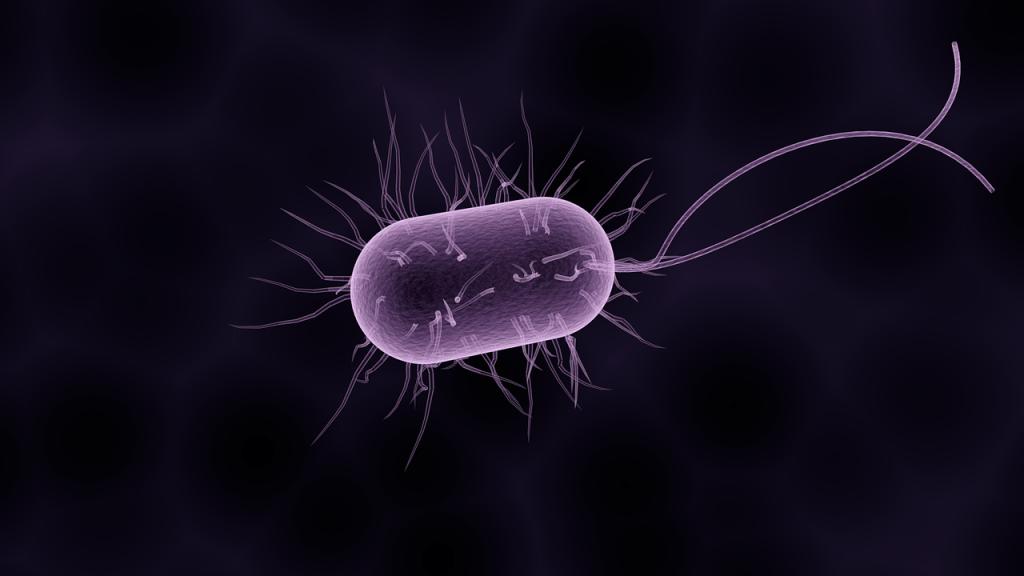 microbiote-intestinal