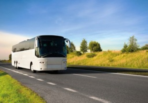 bus-300x207