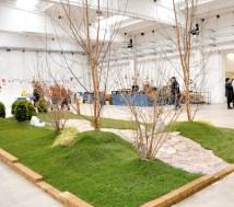 Gonzaga - mondo bonsai - foto di repertorio