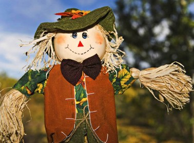 A handmade scarecrow enjoying the sunny days of fall.
