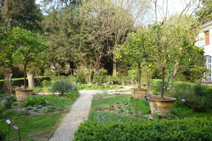 Orto botanico Parco Bertone.jpg