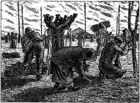 1940 - la raccolta della legna
