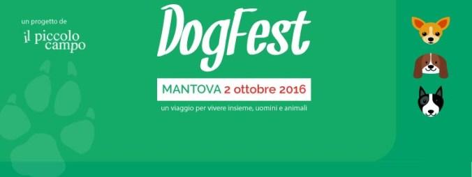 dogfest.jpg