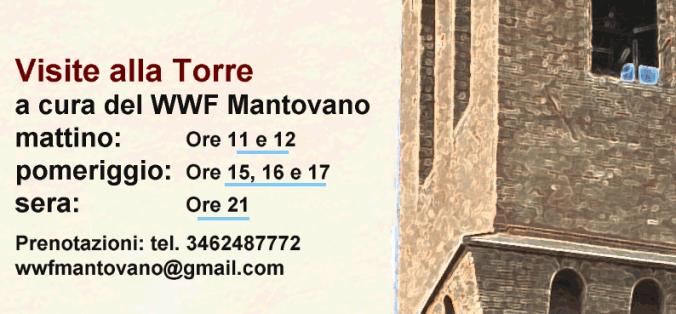 visite guidate torre civica.png