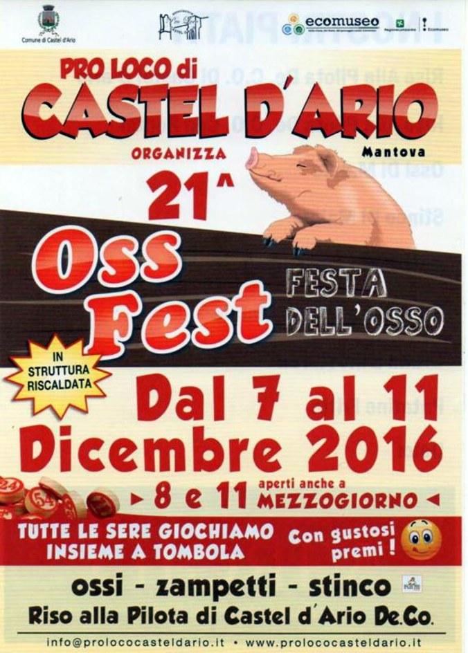 Ossfest2016.jpg
