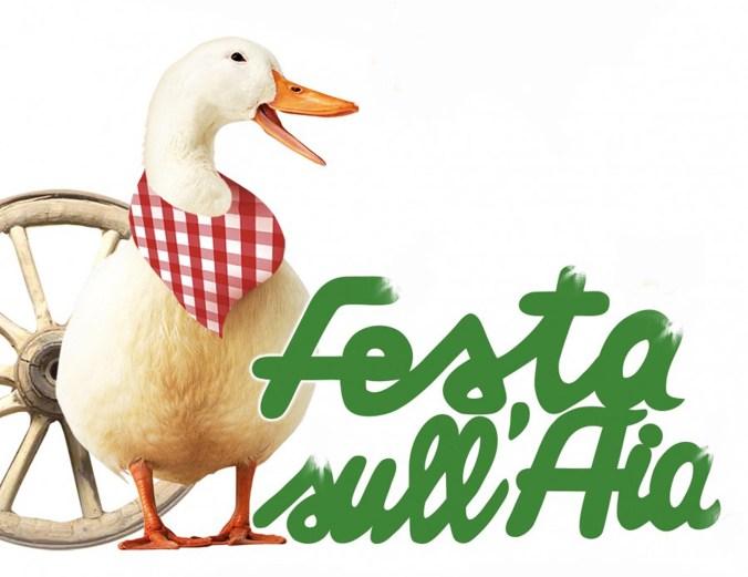 FESTA SULL'AIA.jpg