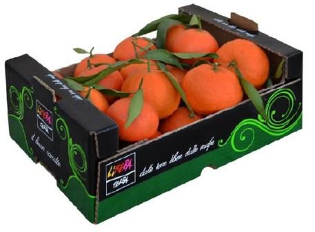 arance tarocco.jpg