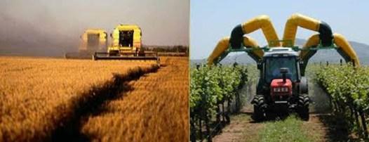 colture agronomiche