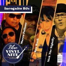 Blue Vinyl Nite