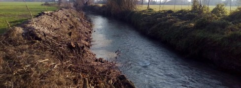 Rodigo - Canale Goldone