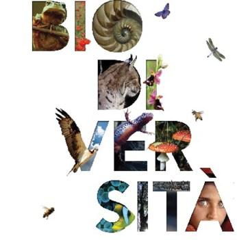 Giornata-Mondiale-della-Biodiversità
