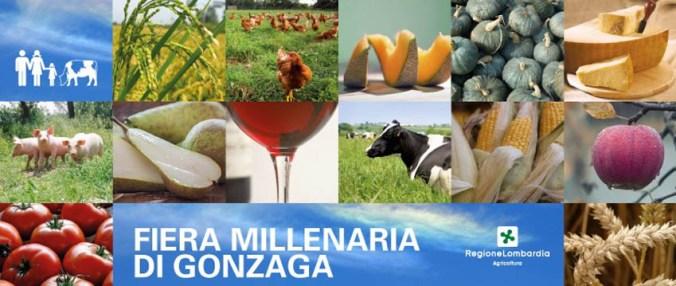 MILLERARIA GONZAGA.jpg