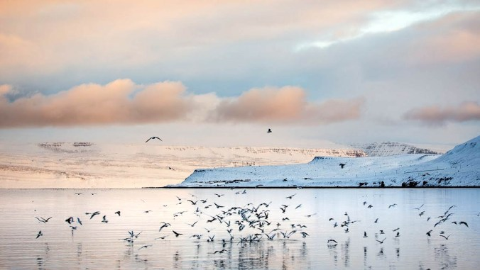 ISLANDA - FOTO DI AMANDA RONZONI