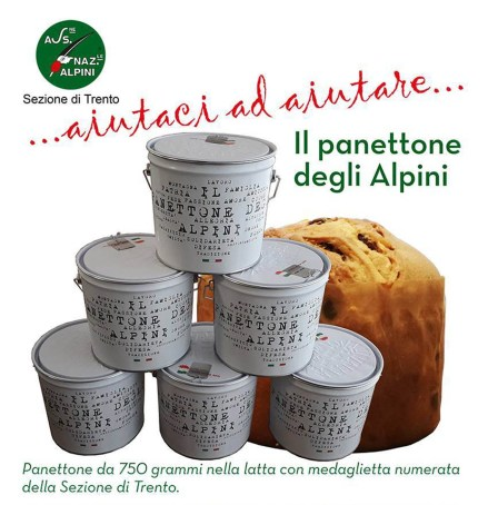 PANETTONE DEGLI ALPINI.jpg