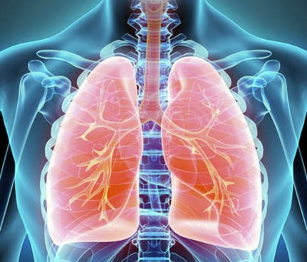 cancro ai polmoni.jpg