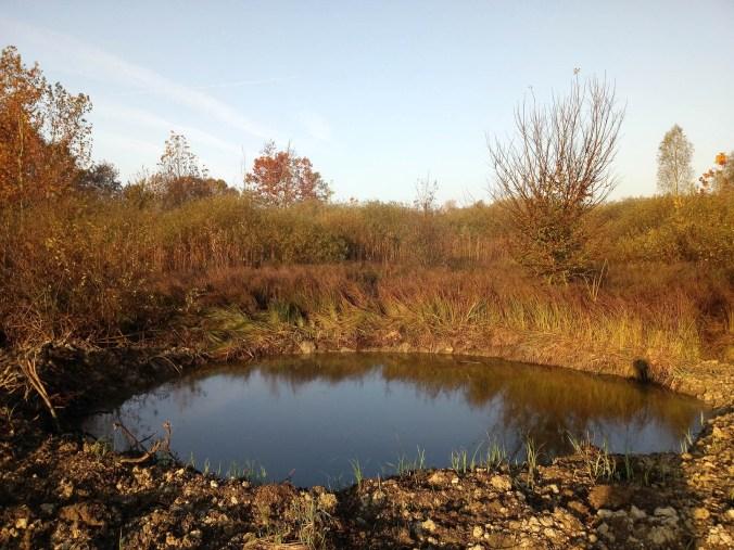 parco del mincio - tessere per la natura
