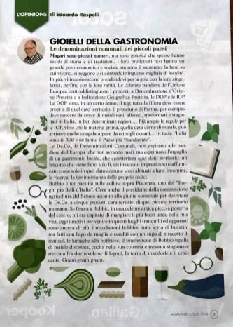MELAVERDE MAGAZINE LUGLIO 2019 editoriale Raspelli
