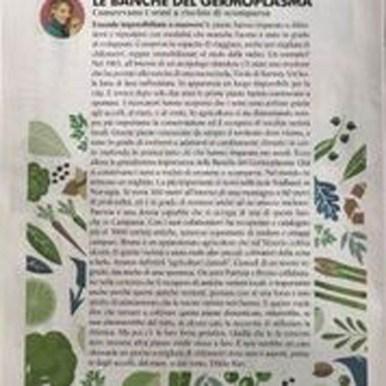 melaverde magazine 2.jpg