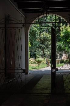 Interno Verde Mantova giardino 50