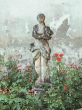 Interno Verde giardino 63
