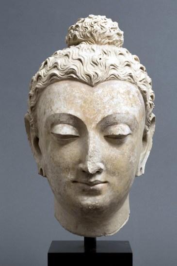 23. Testa del Budda Gandhara, Taxila IV – V secolo d.C. stucco