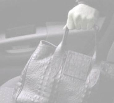 furto di borsetta in auto.jpg