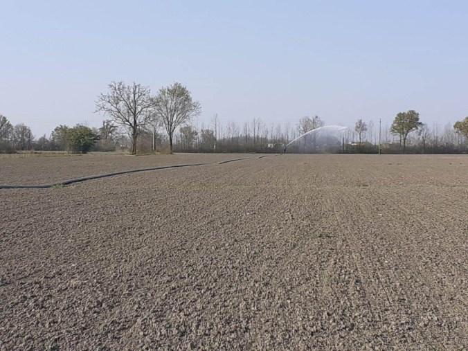 irrigazione terreno