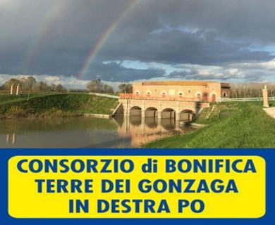 consorzio bonifica terra dei gonzaga.jpg