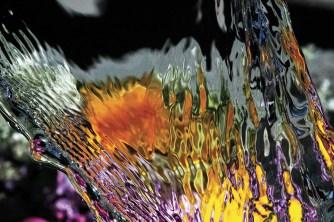 Koporossy Cromie d acqua 60x80. 19.5.20