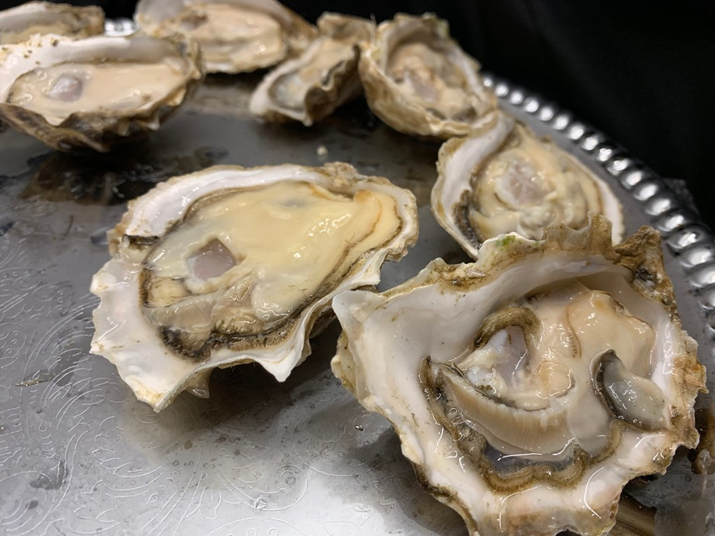 oysters on the half shell, on a silver platter