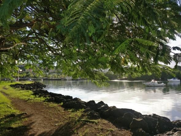 Allée ombragée de la place du bourg des Trois-îlets